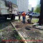 Ayuntamiento Colima cumple con recolección de basura, falta que Secretaria de Cultura confine sus residuos y ramas